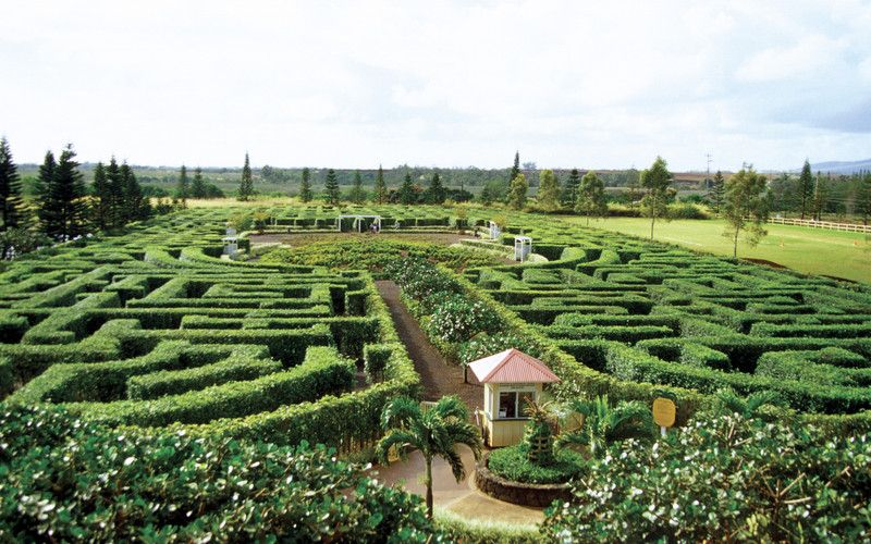 The type of labyrinth garden