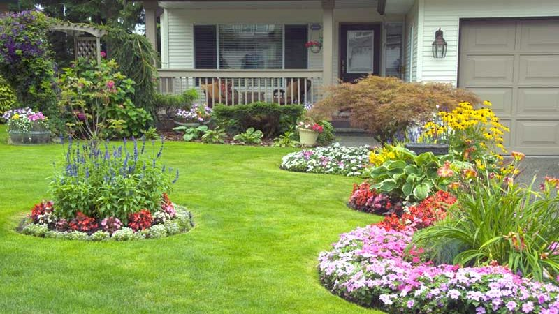 Ideas to create a beautiful garden with roses