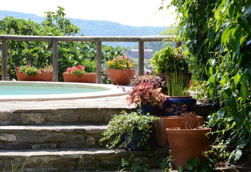 backyard oasis at home