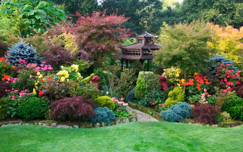 the gardening ideas