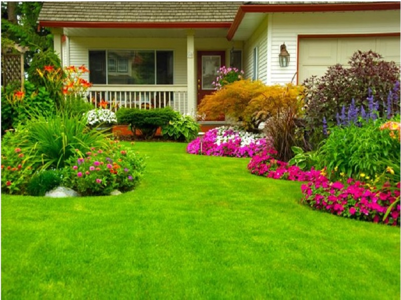 Ideal reforms to improve your patio or garden