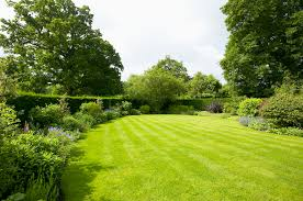 Time to think about garden design